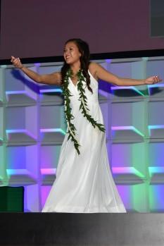 hanalei aloha